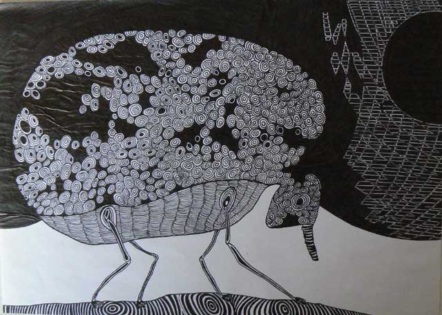 Armadillo drawing by Ronald Rae