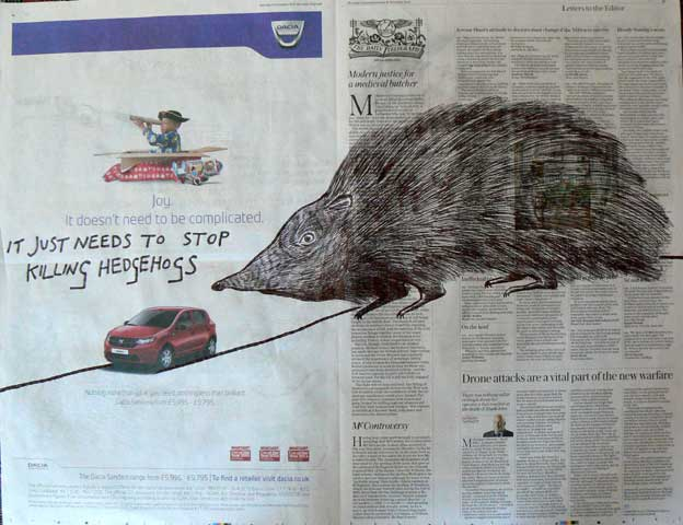 Stop Killing Hedgehogs newspaper drawing by Ronald Rae